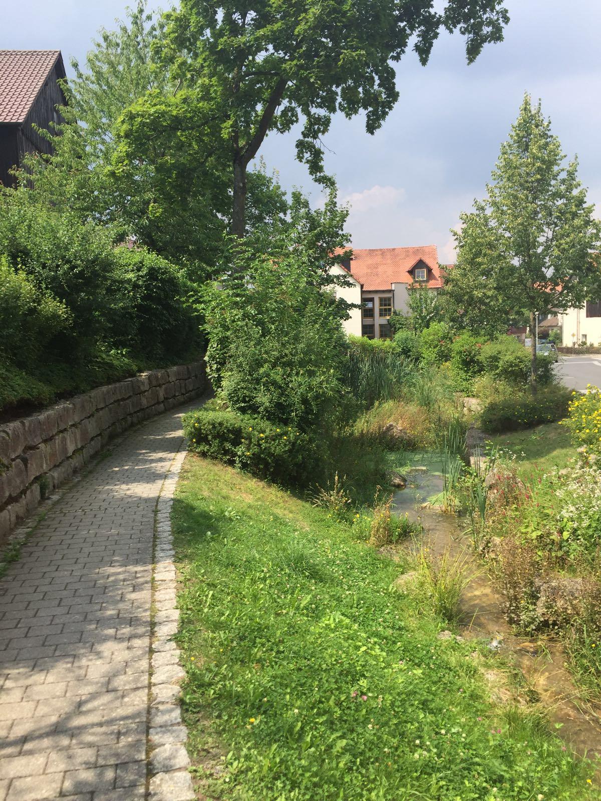 Rinne / Pfütze Bindlach