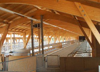 Stall Biohof Küfner-Neiser Statik innen